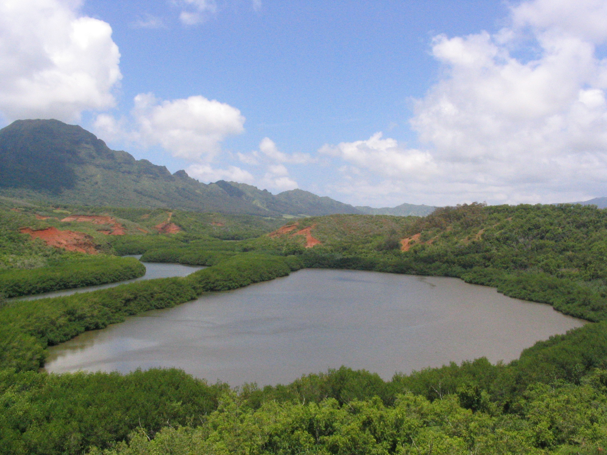 [ʻAlekoko fishpond] (a.k.a. Menehune fishpond). Photo by Collin Grady.