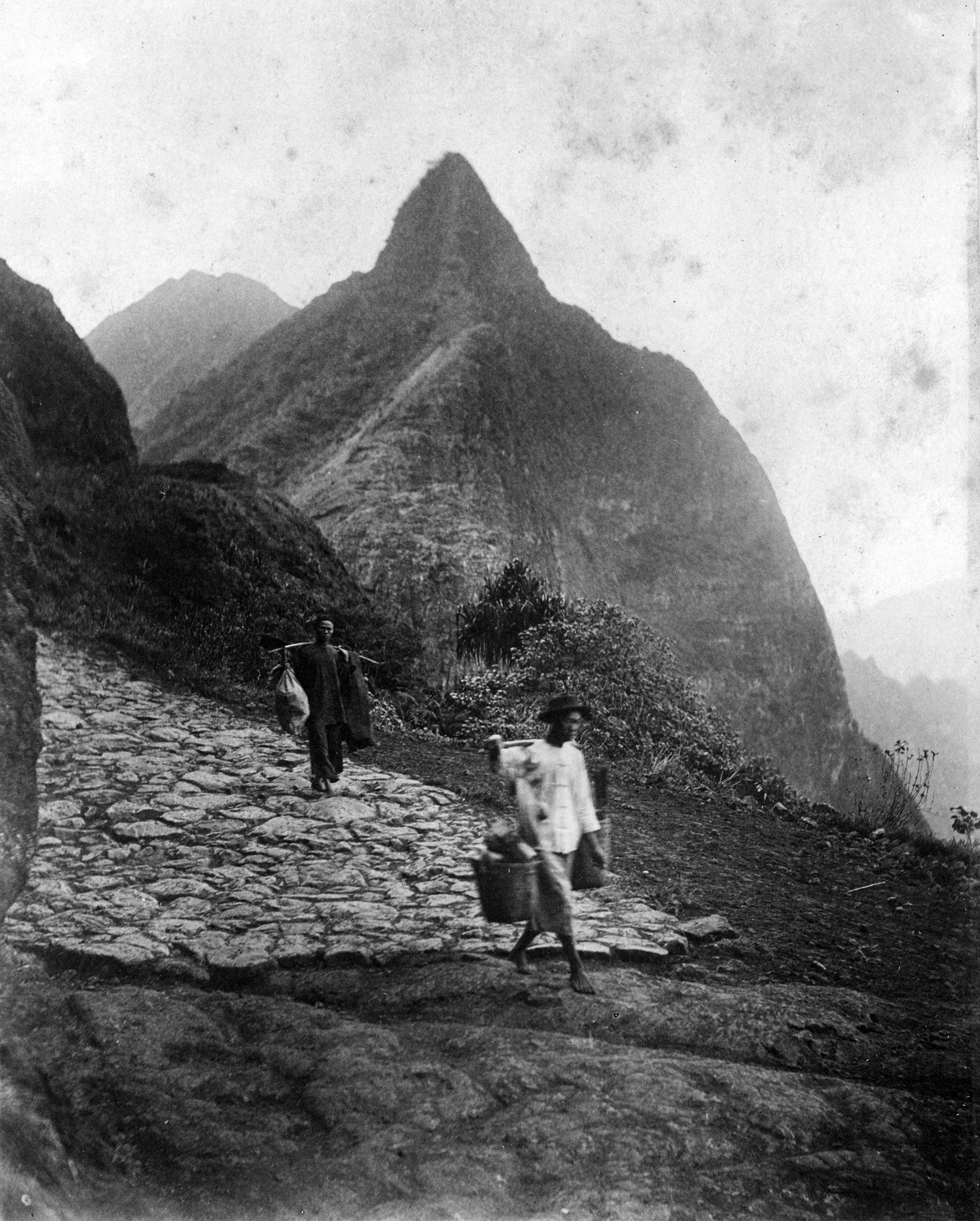 [Men with carrying poles] Walking over Nuʻuanu Pali Road to Kailua; Honolulu, Hawaiʻi, 1886. Photo by Alfred Mitchell.