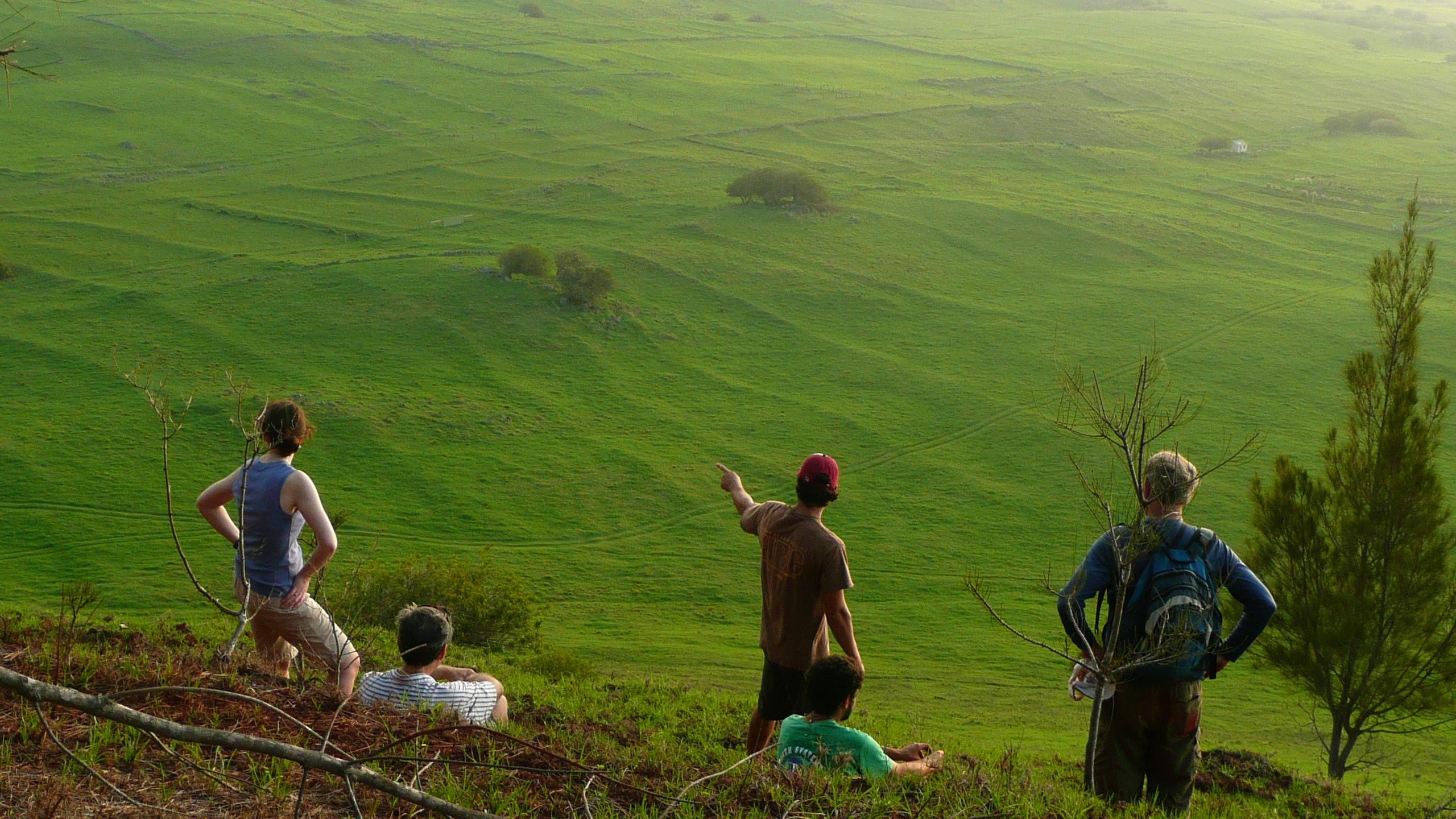 [Kohala field system] Photo by Noa Kekuewa Lincoln.