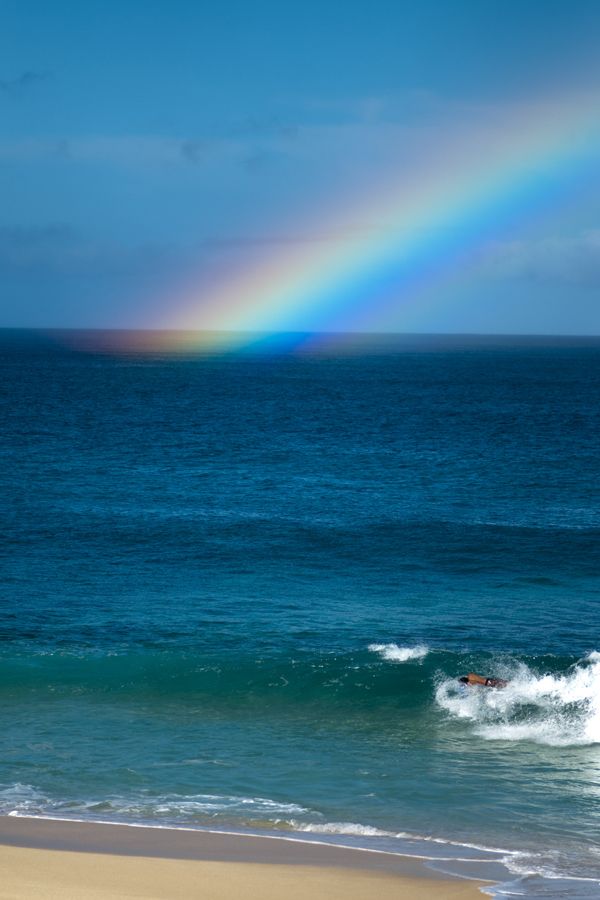 [Rainbow] Photo by Ruben Carillo.
