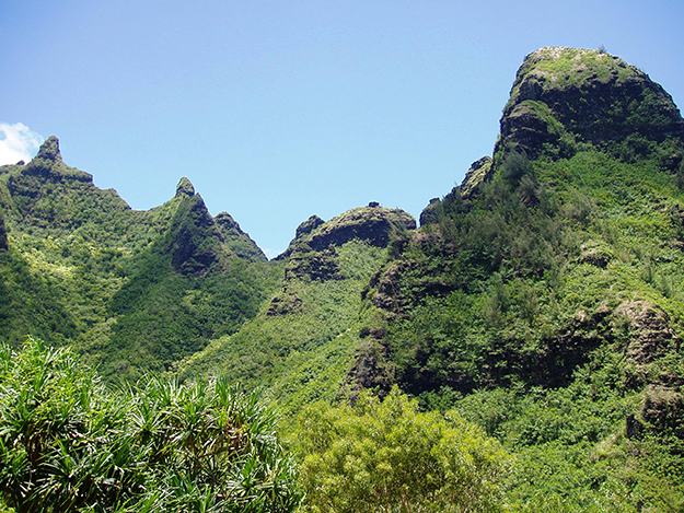 [Makana Mountain Ridge] Viewed from Limahuli Garden and Preserve, Kauaʻi. Photo by Daderot.