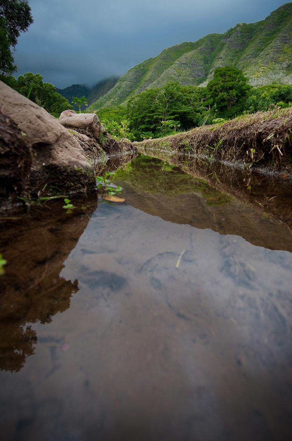 [ʻAuwai] Photo by Ruben Carillo.