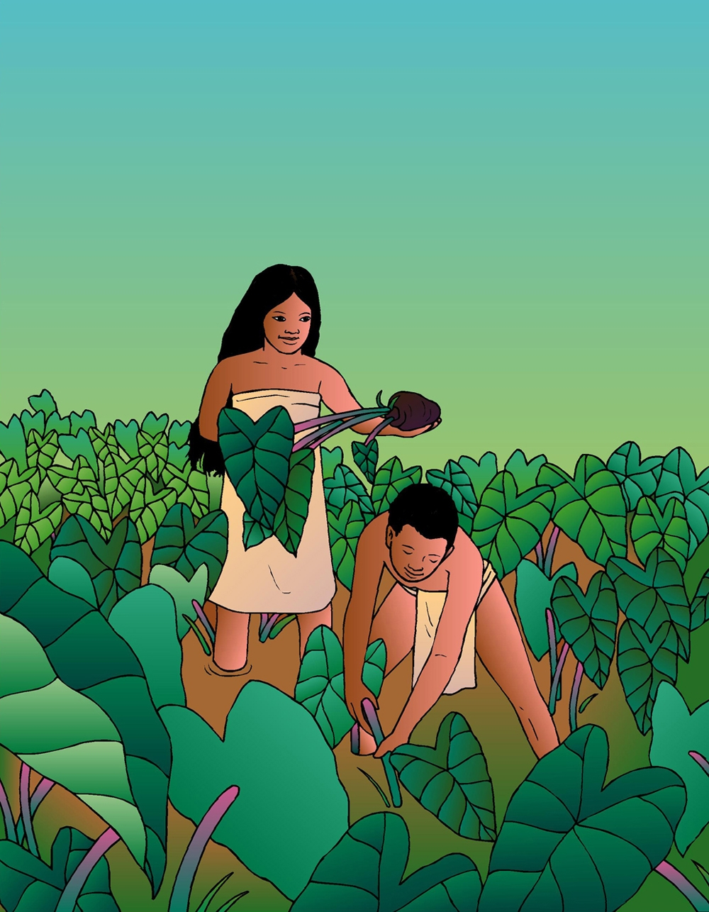 [Harvesting kalo] Artwork by R. Y. Racoma.