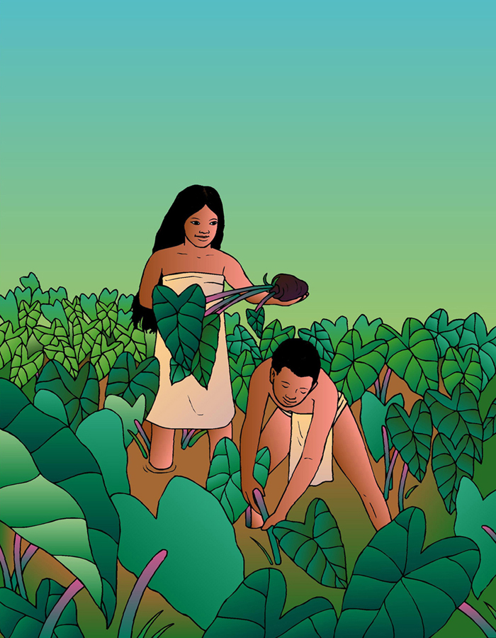 [Boy and girl in loʻi] Artwork by R. Y. Racoma.
