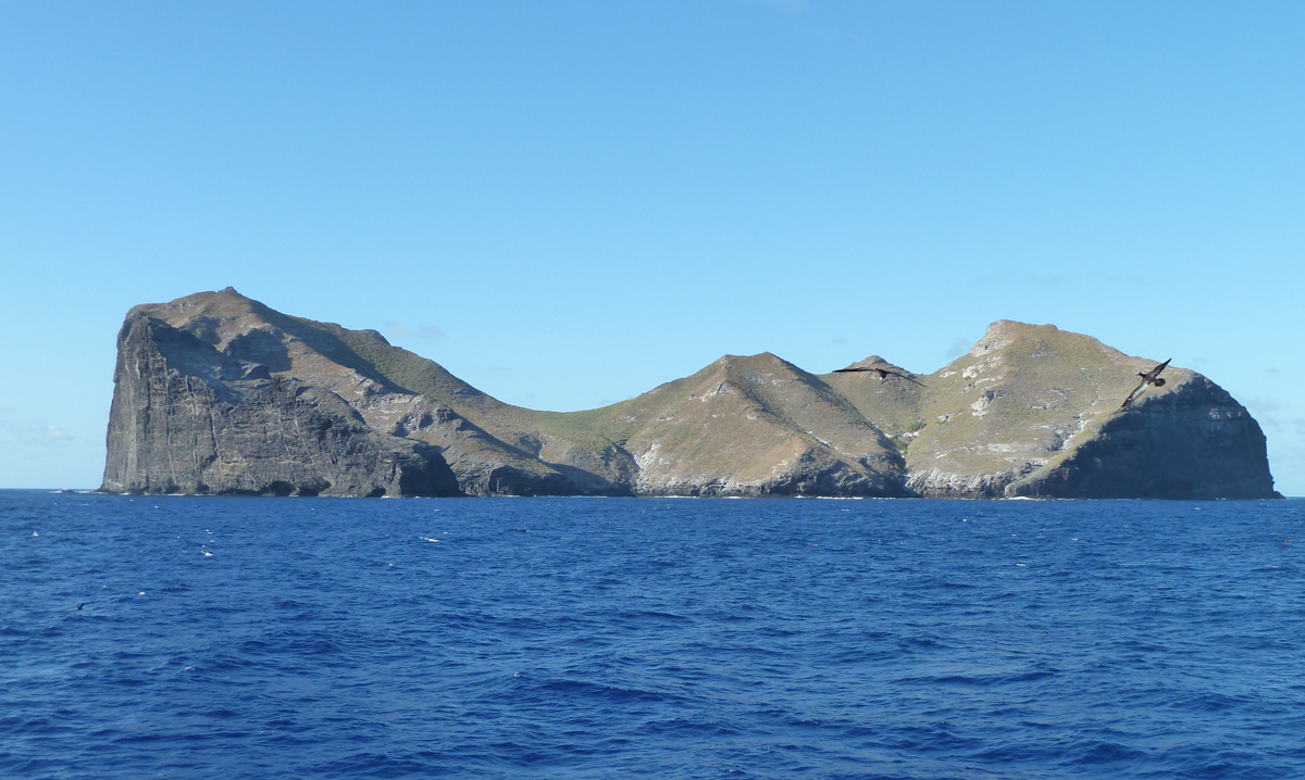[Nihoa Island] Photo by G. Wallace.