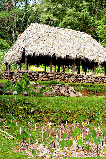 [Traditional Hawaiian structure with pōhaku foundation] Photo by Ruben Carillo.